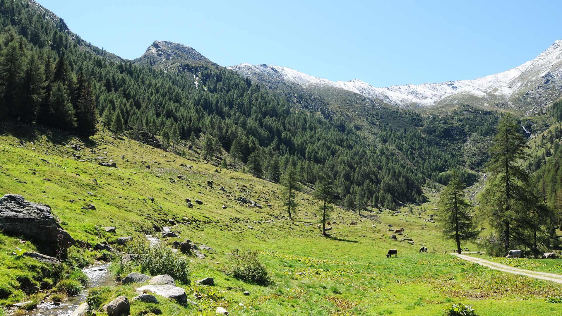Roggia di Matatzer in Alta Passiria