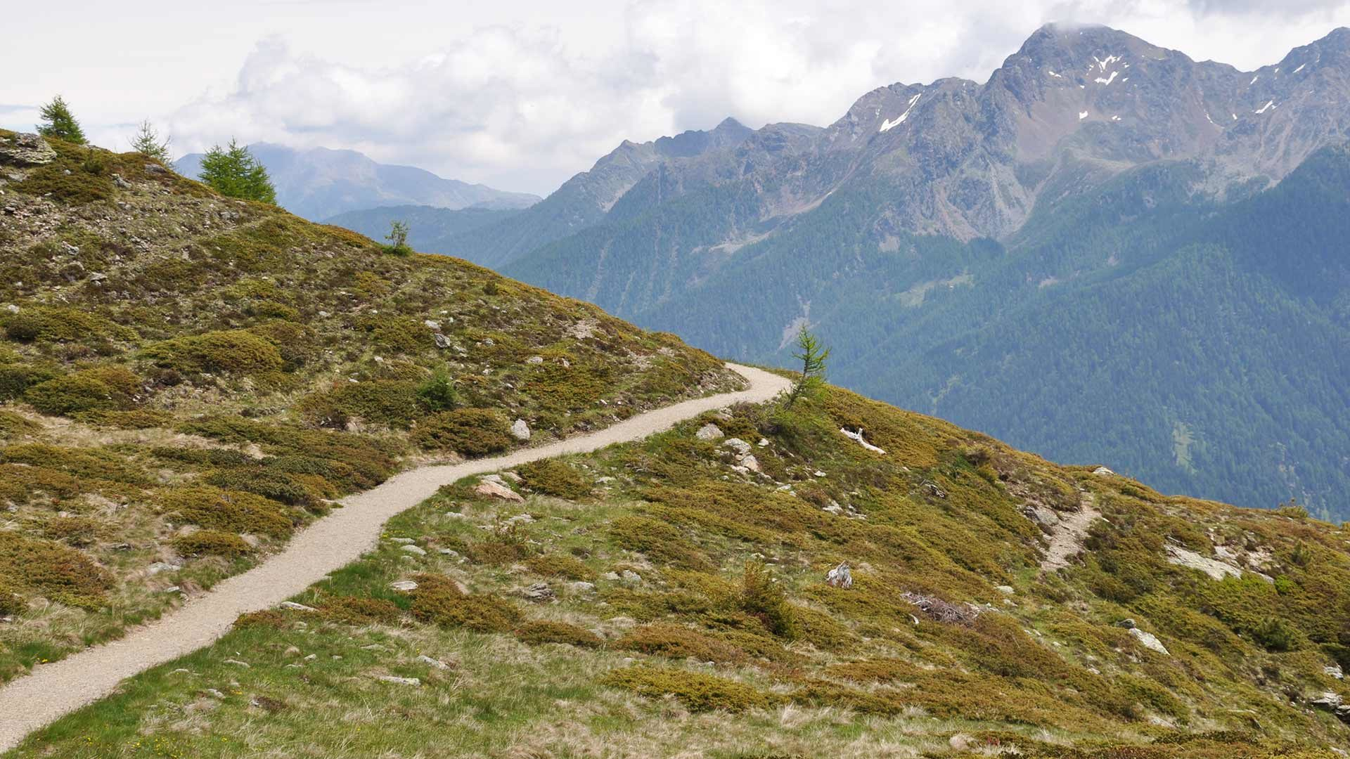 Escursione Monte Muta