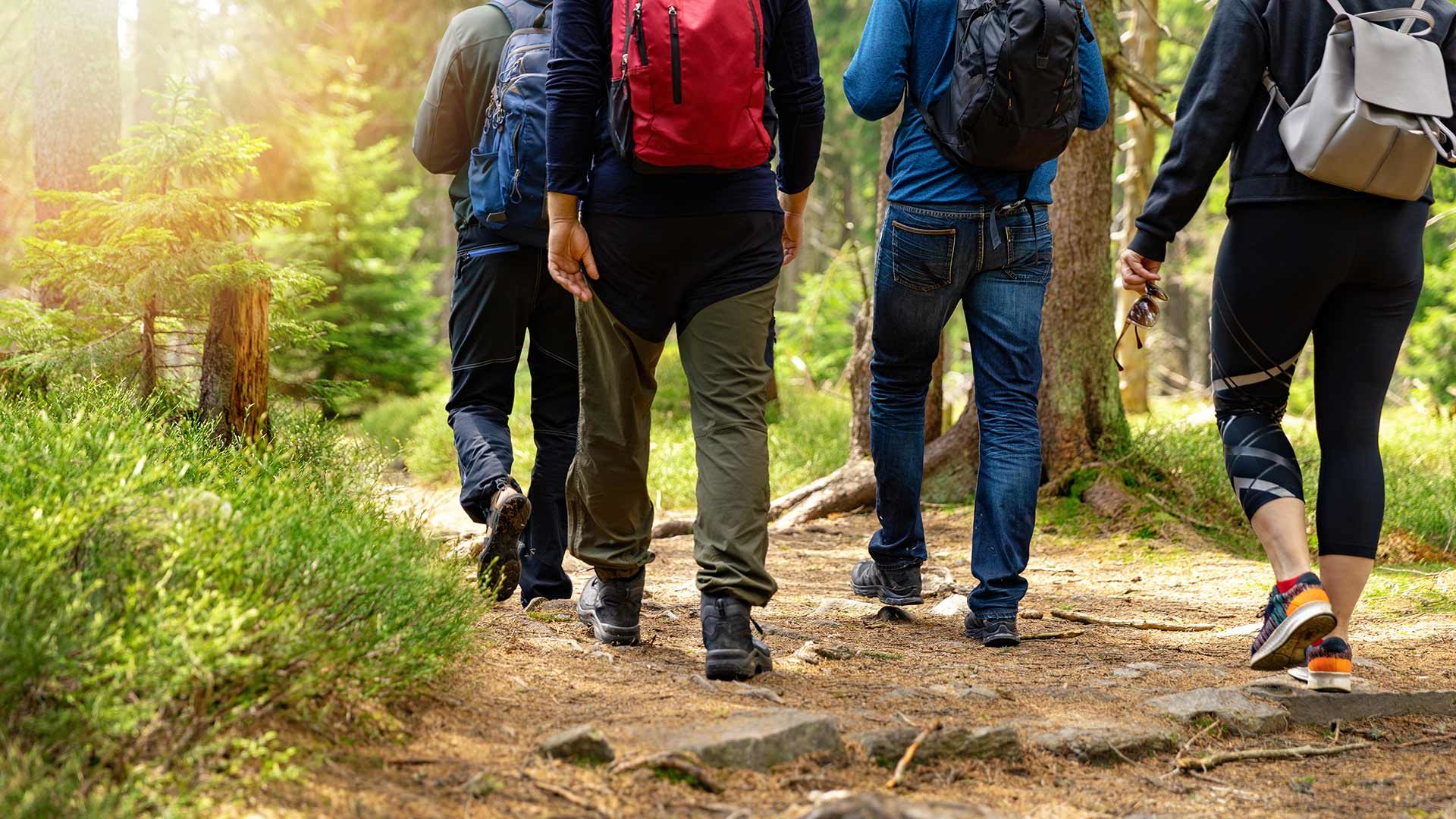Escursione Nalles - Gaido