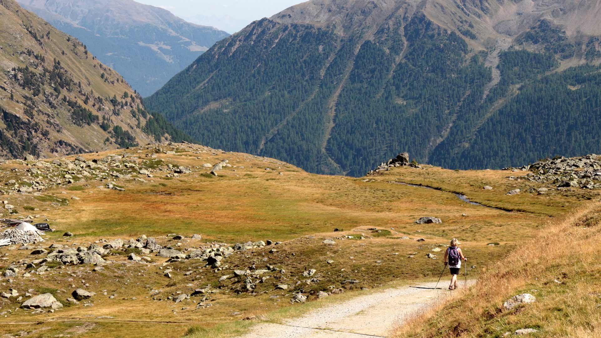 Alta via di Pinalto