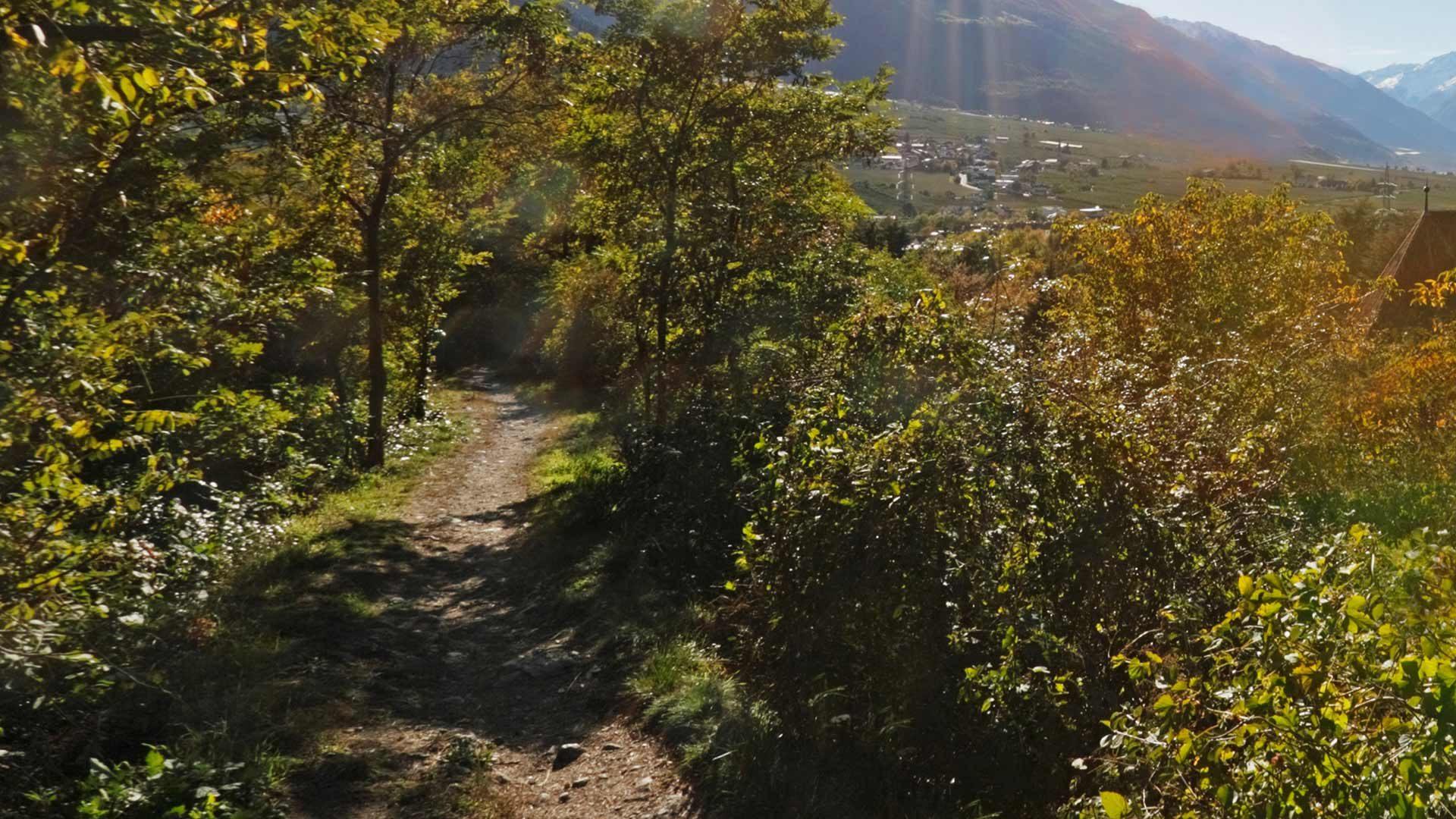 "Sentiero ""Rittersteig"" Plaus"