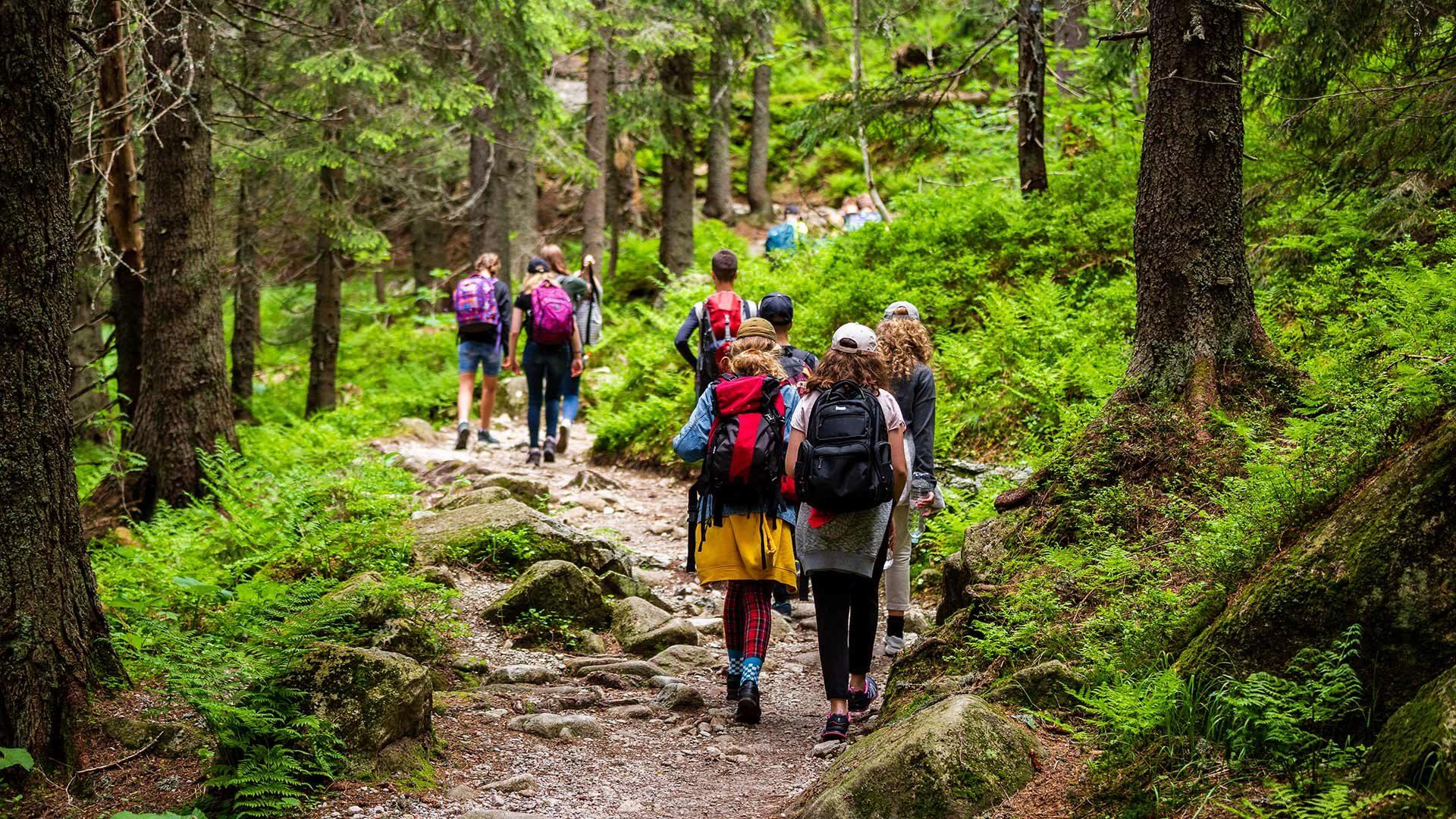 """Escursione circolare al sentiero """"Martinsweg"""""""