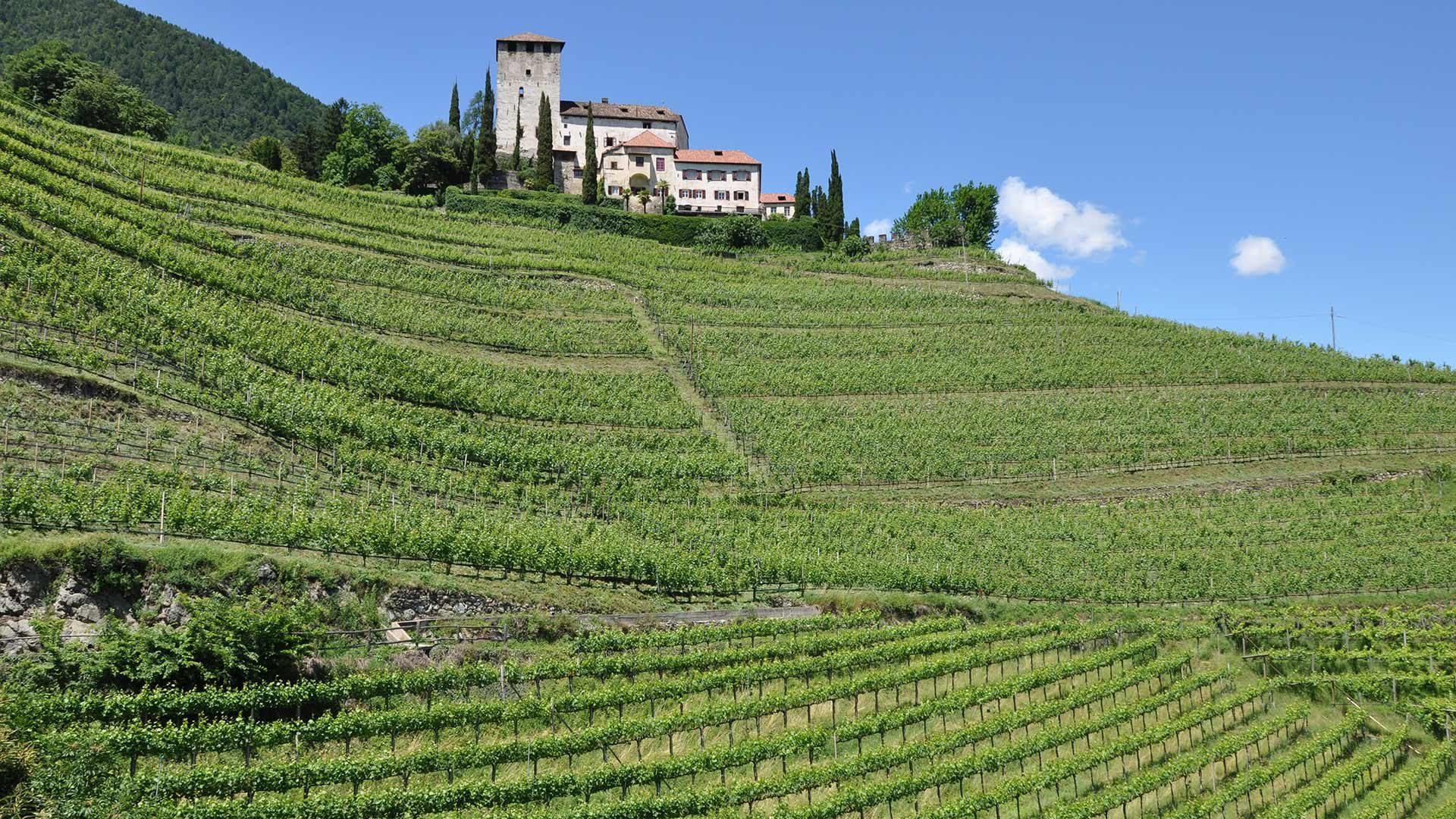 Escursione circolare al Castel Monteleone