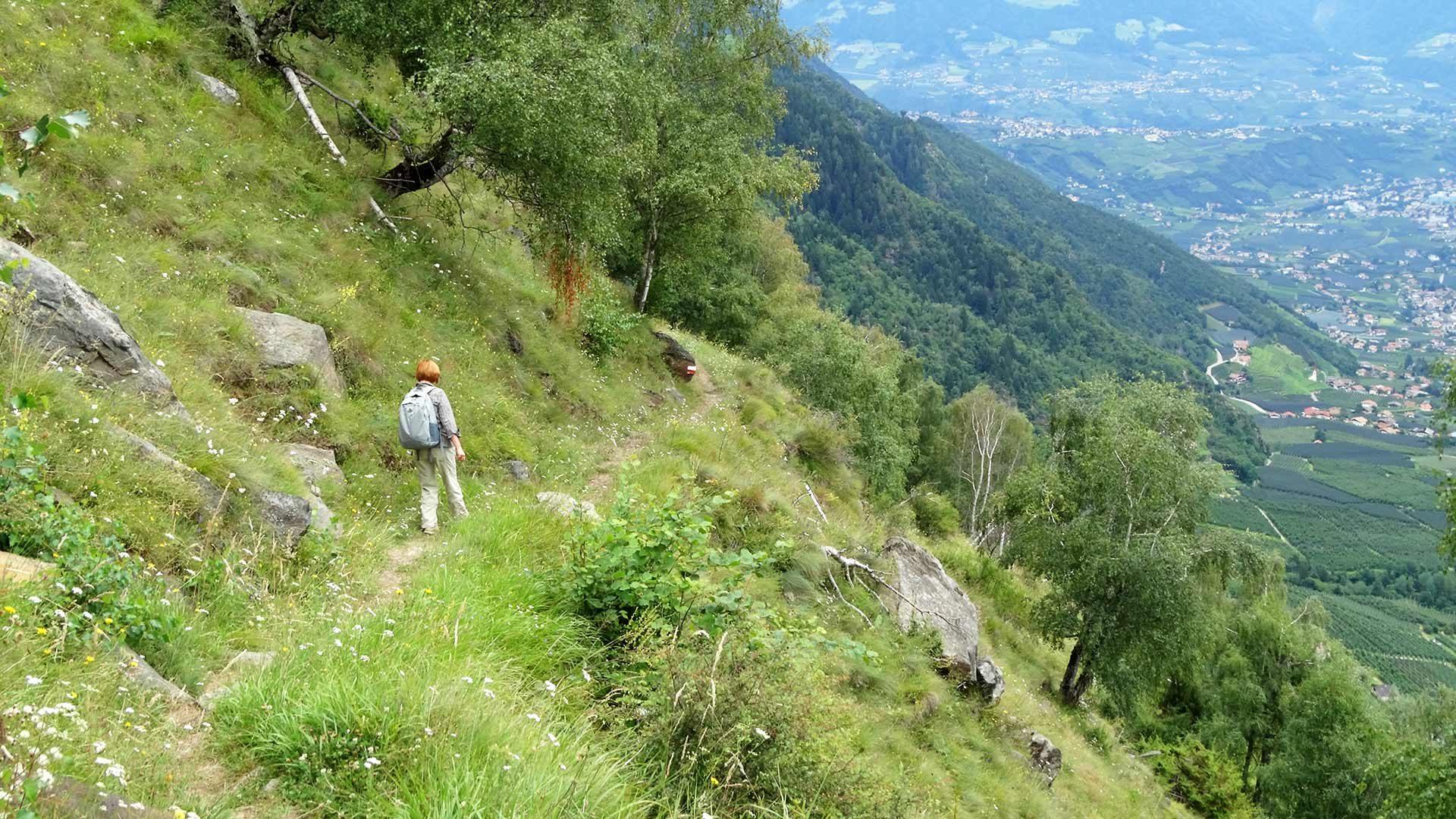 Sentiero panoramico del Monte Sole
