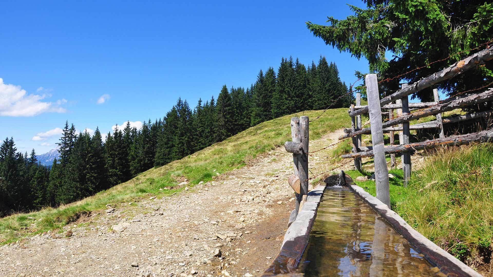 Sentiero alpino di Santa Valburga