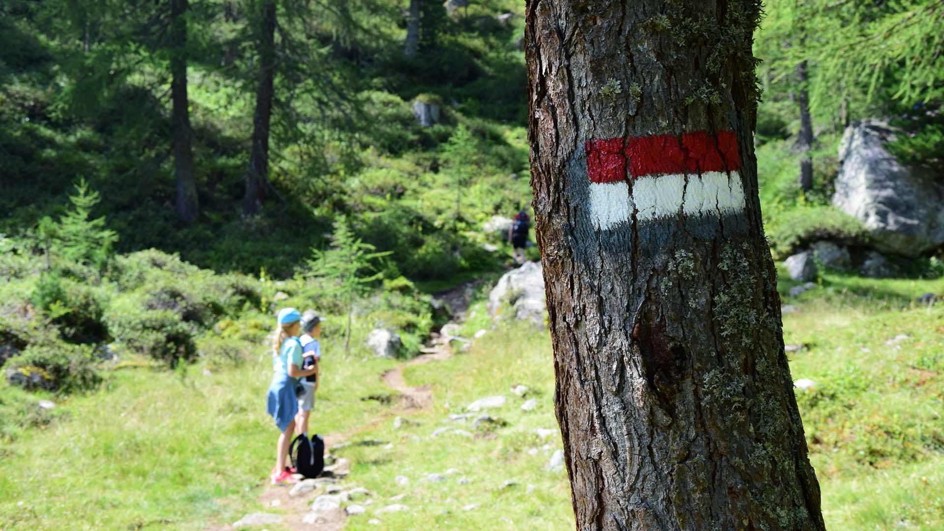 Escursione alla malga Stafler