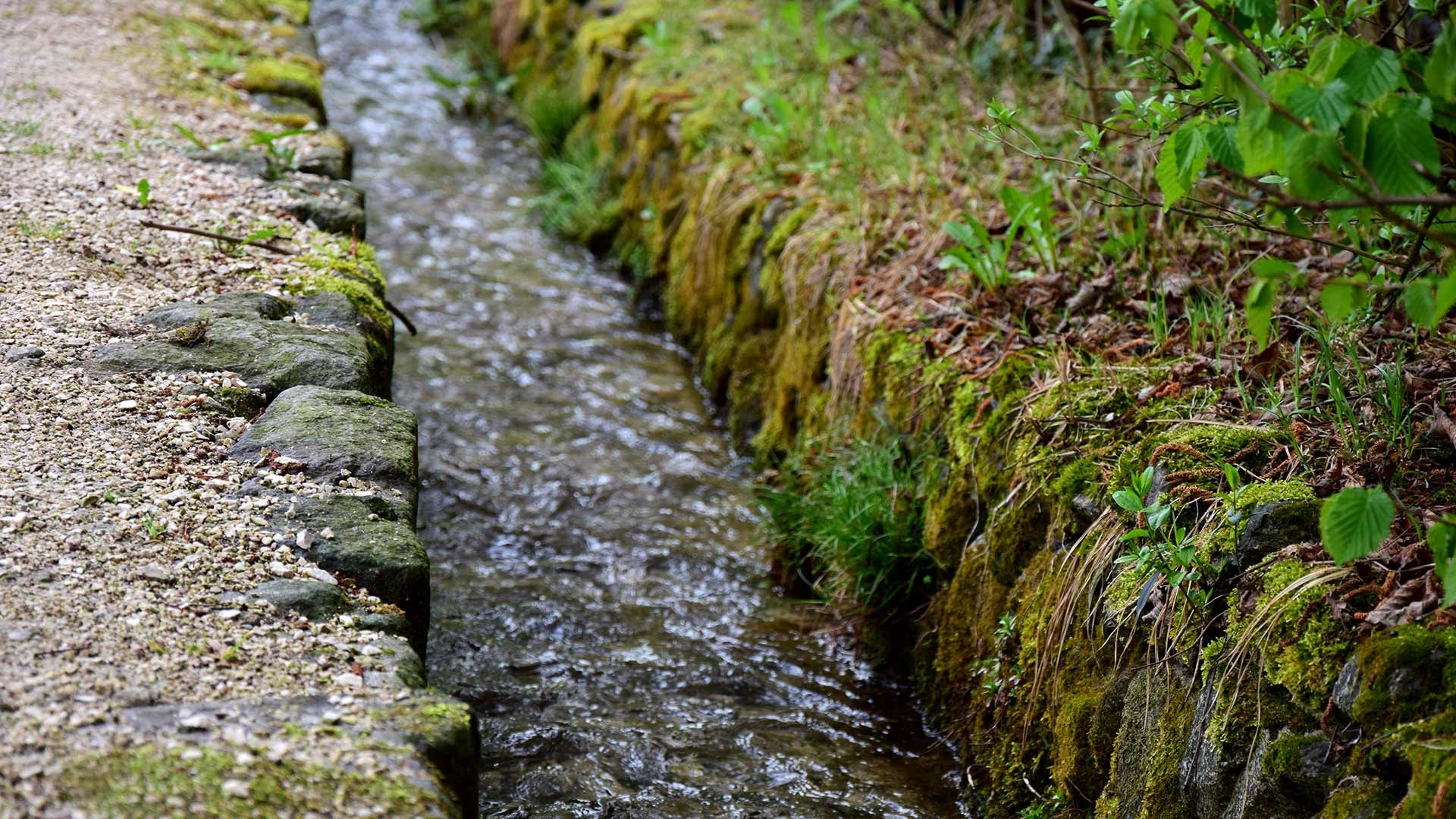 Roggia di Cadipietra
