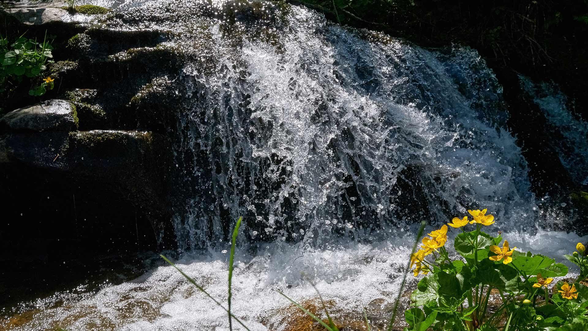 Cascata del Rio Eschio